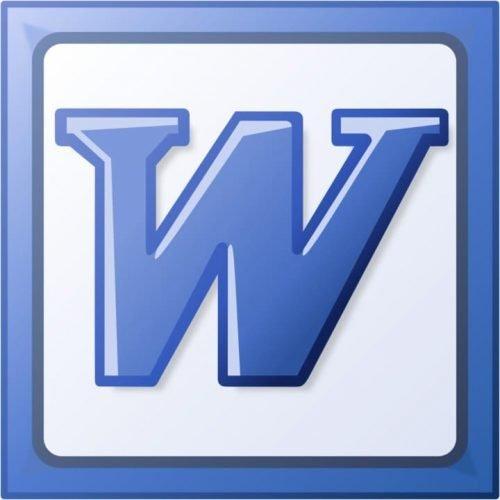 Microsoft Word Logo-2003