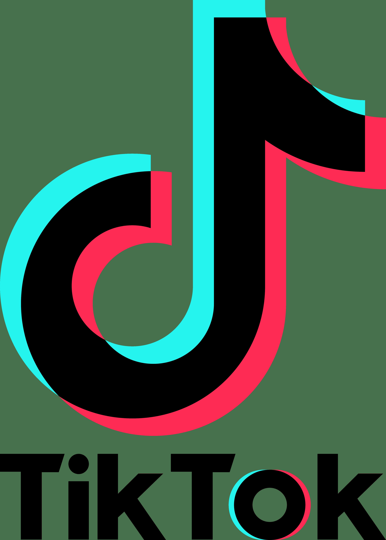Logo De Tik Tok La Historia Y El Significado Del Logotipo La Marca Y El Símbolo Png Vector