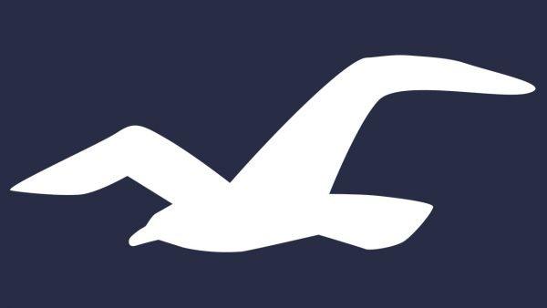 Hollister simbolo