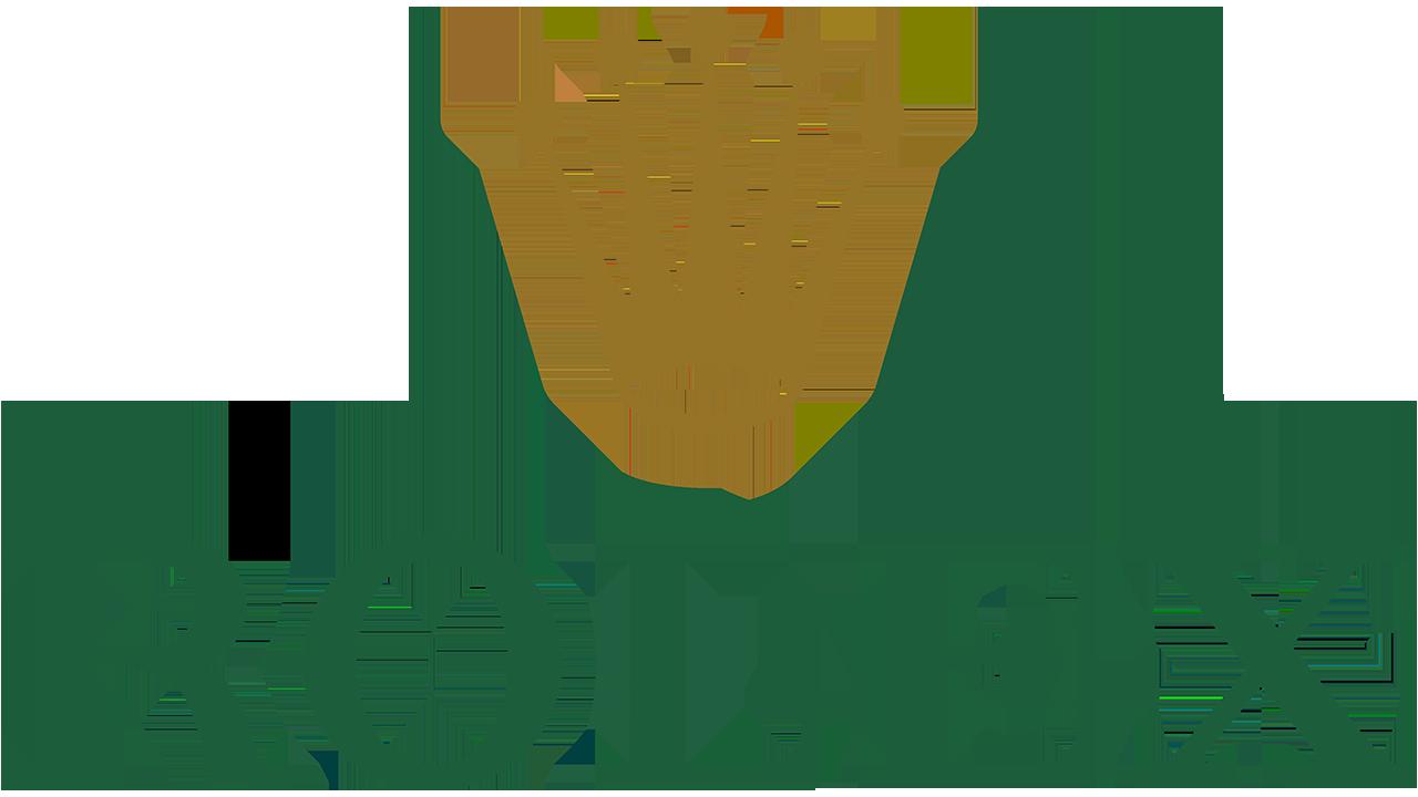 Logo de Rolex: la historia y el significado del logotipo, la marca ...