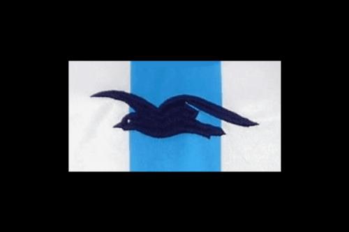 Brighton Hove Albion logo 2002