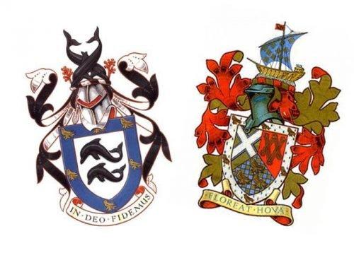 Brighton Hove Albion logo 2001