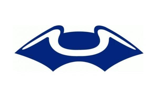 New England Patriots Logo 1960