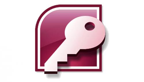 Microsoft Access Logo-2007