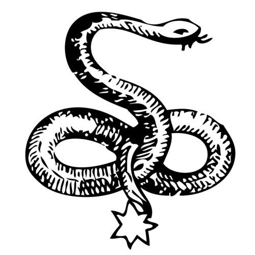 Celta Serpiente Simbolo