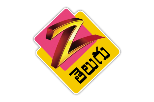 Zee Telugu Logo 2005