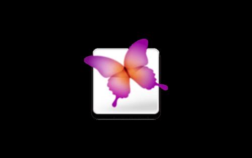 Adobe InDesign Logo 2005