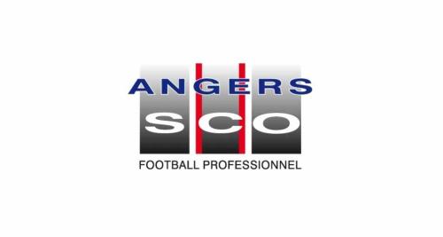 Angers logo 1994