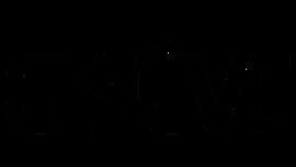 Elseve logo