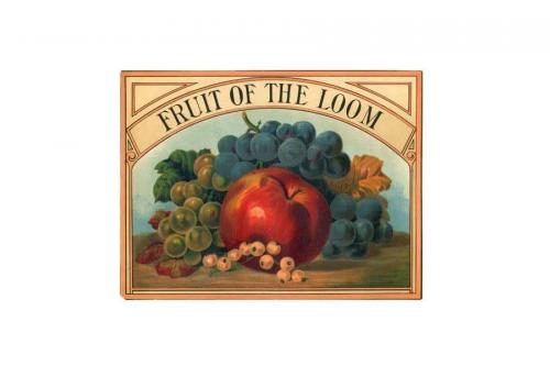Fruit of the Loom Logo 1893