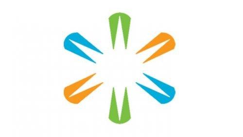 LSI logo