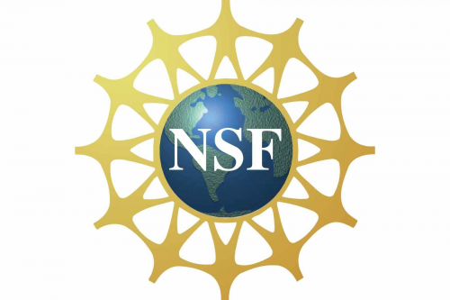 National Science Foundation logo 1999