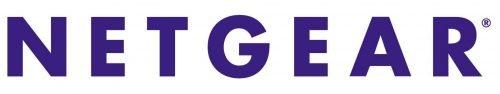 Netgear logo 1996