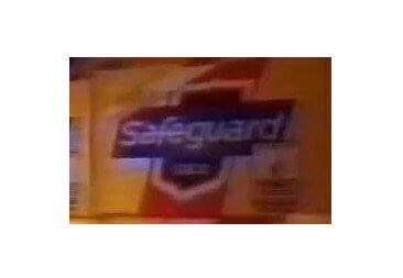 Safeguard Logo 1987