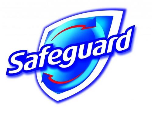 Safeguard Logo 2007