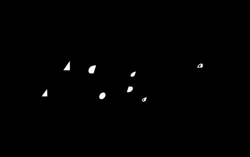 Advance Auto Parts Logo 1991