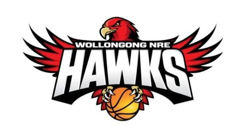 Illawarra Hawks logo