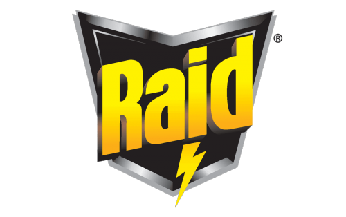 Raid Logo 1999